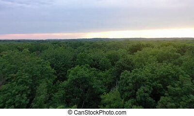 Aerial view of the beautiful landscape - green deciduous...