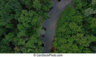 Aerial view of the beautiful landscape - the river flows...
