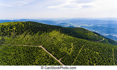 Aerial view of the beautiful mountain landscape with mountain peaks covered with forest and a cloudy sky.