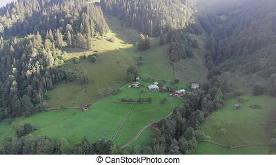 Aerial View of the Carpathian Mountain Valley with Green Meadows and Trees