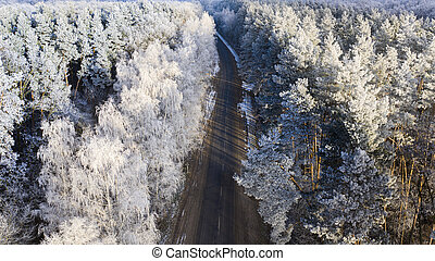 Aerial view of the drone for the road in the winter coniferous forest.