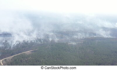 Aerial view of the effects of deforestation and wildfires in...