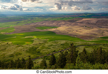 Aerial view of the farmland in the Palouse region of Eastern Washington state