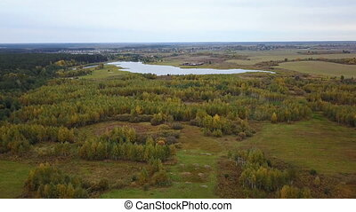 Aerial view of the field with trees covered with yellow foliage and lake on background