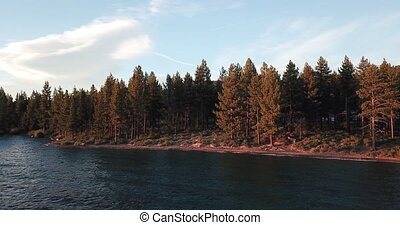 Aerial view of the forest on the shore of Lake Tahoe