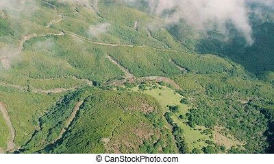 Aerial View of the Mountain Evergreen Forest