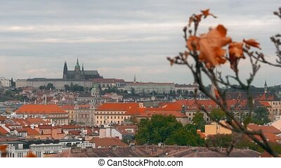 Aerial view of the Old Town architecture with red roofs in Prague , Czech Republic. St. Vitus Cathedral in Prague.