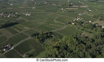 Aerial view of the Pomerol vineyard - in the heart of the...