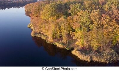 Aerial view of the Teterev River autumn with trees on which yellow foliage