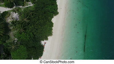 Aerial view of the tropical island beach and sea - Aerial...