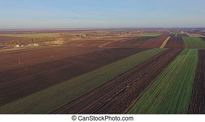Aerial view of the Ukrainian fields