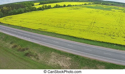 Aerial view of the yellow field with rape and road
