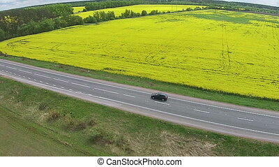 Aerial view of the yellow field with rapeseed and road