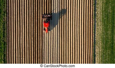 Aerial view of tractor performs seeding on the field -...