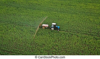 Aerial view of tractor treats agricultural plants on the...