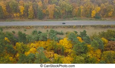 Aerial view of traffic on the road surrounded by autumn forest