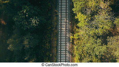 Aerial view of train tracks in autumn forest. Concept of...