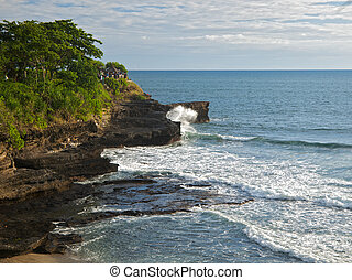 Aerial view of tropic coastline