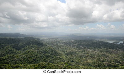 Aerial view of tropical rainforest on the shore of Gatun...