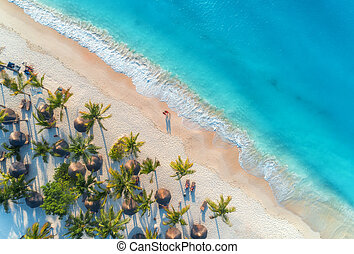 Aerial view of umbrellas, palms on the sandy beach and sea