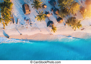 Aerial view of umbrellas, palms on the sandy beach at sunset