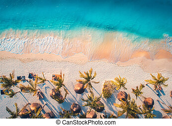 Aerial view of umbrellas, palms on the sandy beach of blue sea