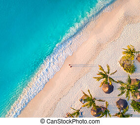 Aerial view of umbrellas, palms on the sandy beach