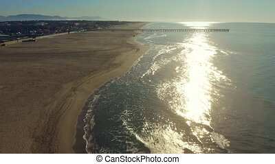 Aerial view of unknown people walking their dogs on the sand...