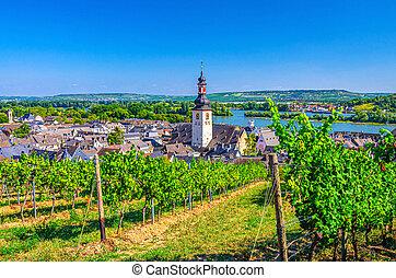 Aerial view of vineyards Rheingau wine region, Rudesheim am Rhein historical town centre with St. Jakobus church and Rhine river, blue sky background, Rhineland-Palatinate and Hesse states, Germany