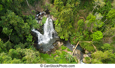 Aerial view of waterfall in jungle