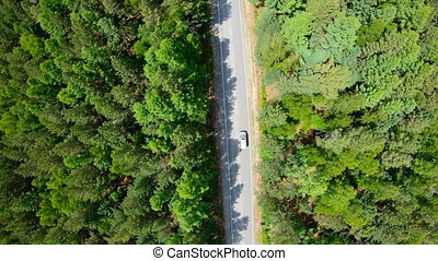 Aerial view of white car driving on road in forest