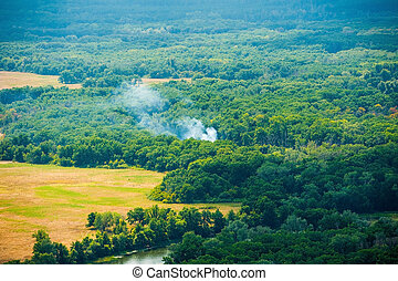 Aerial view of wildfire in forest