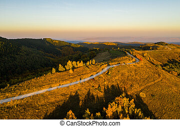 Aerial view of winding road at autumn