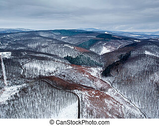 Aerial view of winding road in winter