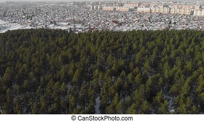 Aerial view of winter forest and city