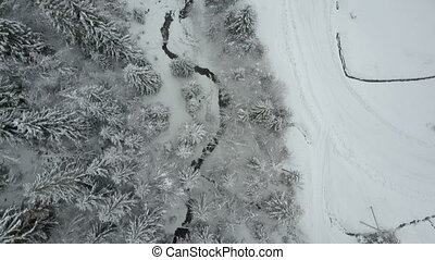 Aerial view of winter spruce snowy forest. Low flight over a river and pine trees covered by snow. Beauty of wildlife on snowy day.