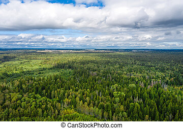Aerial view of woodland on cloudy summer day