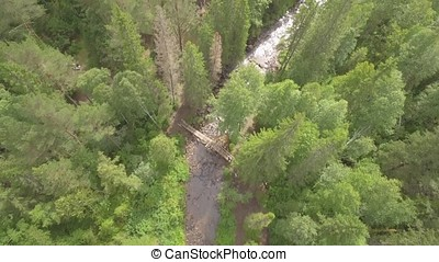 Aerial view of woodlands with river in the summer during a flight. River through the green spruce forest, aerial view. The top view on the autumn river with forest, beautiful landscape. Top view of the river in the mountains surrounded by a green forest