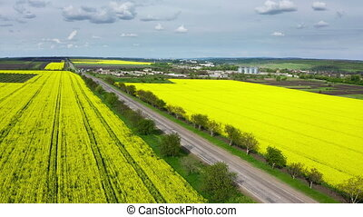 Aerial view of yellow blooming oilseed rape fields