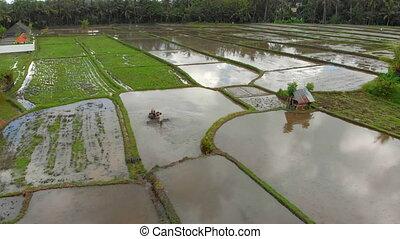 Aerial view on a farmer that preparing a rice field for...