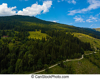 Aerial view on cozy hut and mountain in the skiing region of Hinterglemm in the Alps in Austria on a sunny summer day