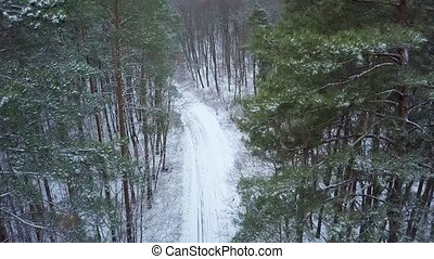 Aerial view on road in the winter snow fores. Scenic winter...