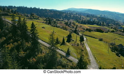aerial view on rural area - drone flies over the spruces and...