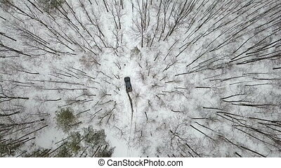 Aerial view on SUV 6x6 that rides by snow-covered road in  winter  forest, top view