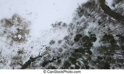Aerial view on the meandering river in winter forest. Top view on snowy forest.