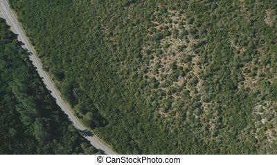 Aerial View on the Road on Hillside