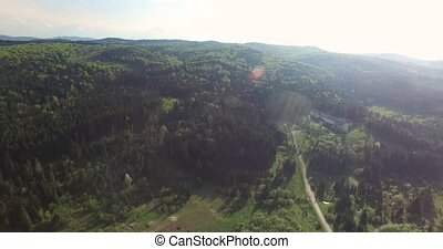 Aerial view. Panoramic shot of forest road