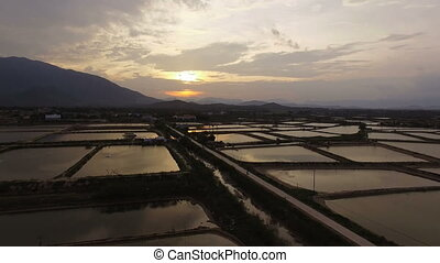 Aerial View Rice fields at sunset in Vietnam