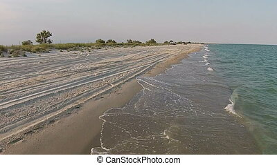 Aerial view sandy beach of the sea at the evening with gull