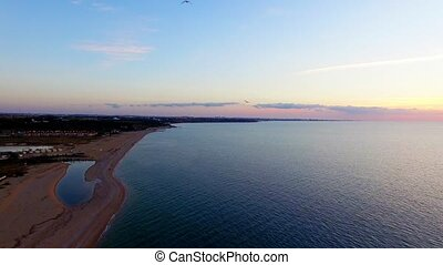 AERIAL VIEW. Several Birds Flying Over Beach At Sunset -...